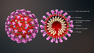 Coronavirus / Covid-19 ** mise à jour le 6 avril